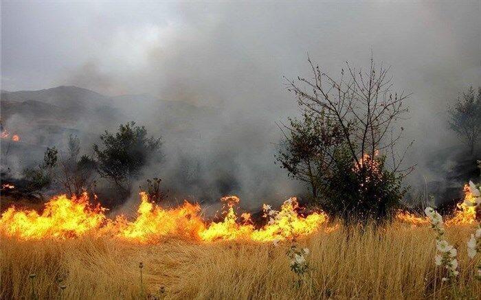 خبرنگاران آتش سوزی گسترده مراتع علی آباد نیزار قم همچنان ادامه دارد