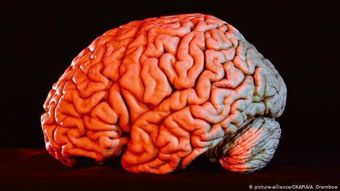 کرونا و آسیب های جدی به مغز