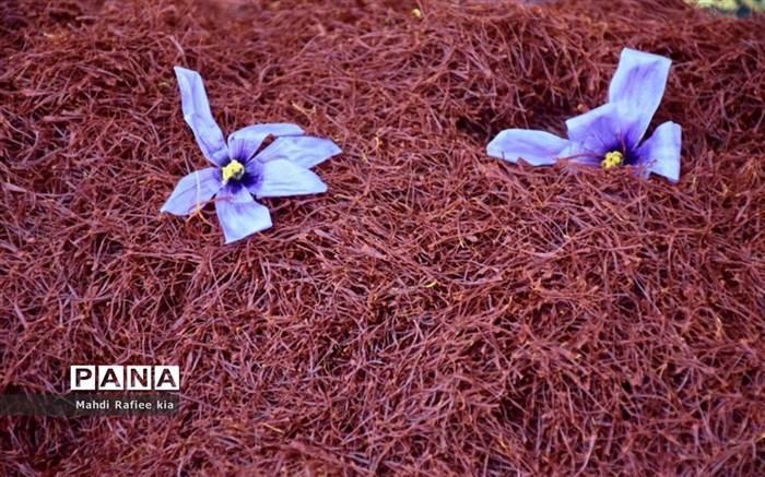خرید حمایتی زعفران از هفته آینده آغاز می شود