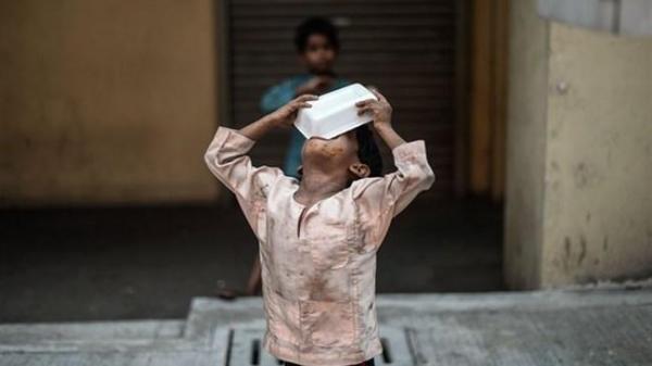 ترجمه گزارش جهانی فائو با عنوان چشم انداز غذا منتشر شد