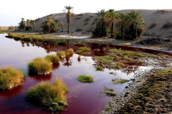 منطقه آب سرخ جازموریان در شهرستان قلعه گنج کرمان، عکس