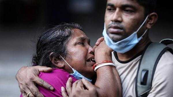هند، شایعه درمان کرونا با مدفوع گاو