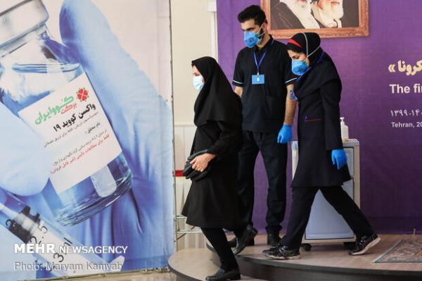 فرایند آماده سازی اولین واکسن ایرانی، 18 میلیون دوز واکسن در شهریور